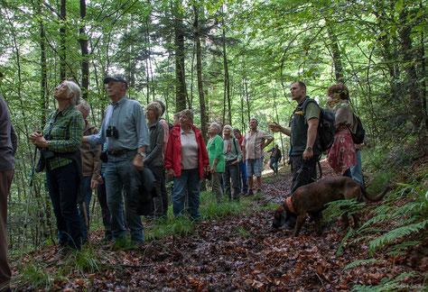 Revierförster Marco Astfalk mit Waldfreunden im Bannwald Steinhäusle