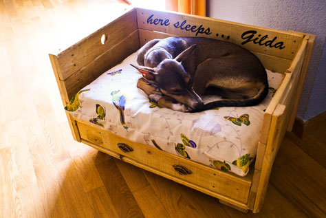 cama madera mascota personalizada