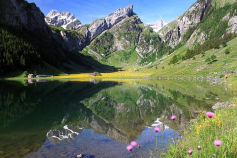 Einer von vielen Seen im Appenzeller Land (Seealpsee)