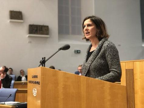 Quelle: Landtag Rheinland-Pfalz, Click auf das Bild führt zum Videomitschnitt