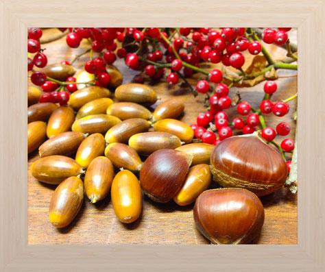 秋冬酵素材料としてガマズミの実: ポリフェノールやクエン酸がたっぷりと言われます。
