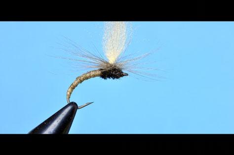 massimiliano mattioli, flyfishing, fly tying