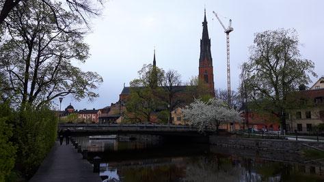 Ufer des Flusses Fyris in Uppsala