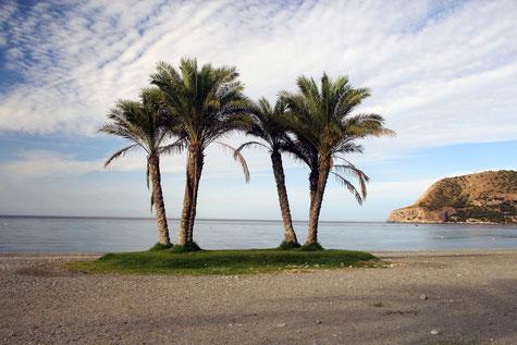 The beach of La Herradura