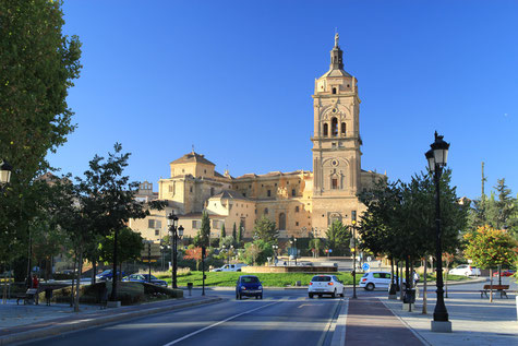 The cathedral of Guadix.