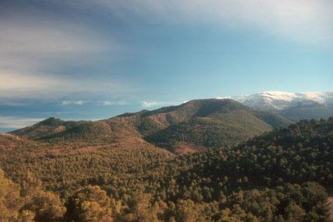 Natural Park Sierra de Baza