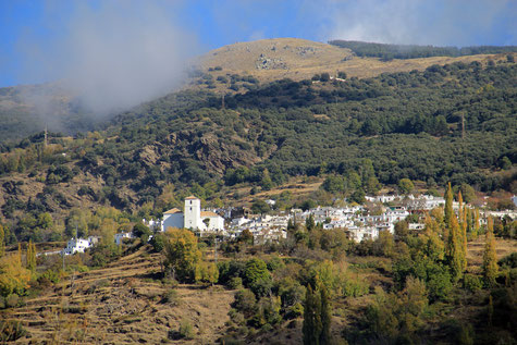 View on Bubión