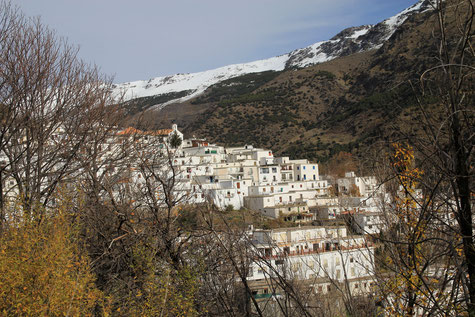 A view on Trevélez
