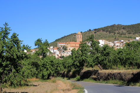 A view on Ferreira
