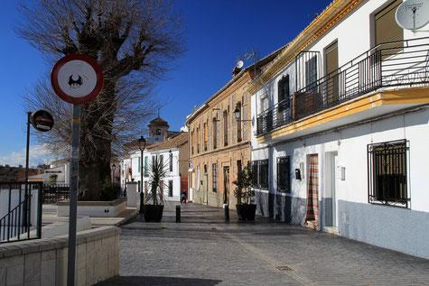"""The """"boulevard"""" of Nívar"""
