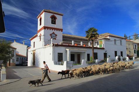 The church of Santa Cruz de Comercio