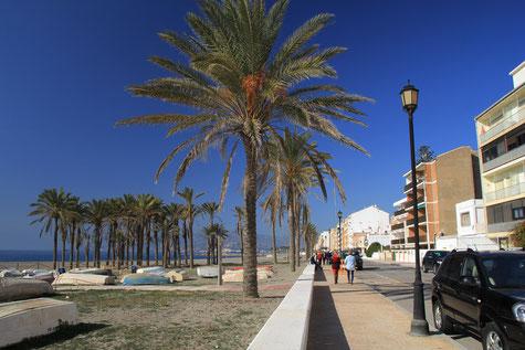 The boulevard of Torrenueva