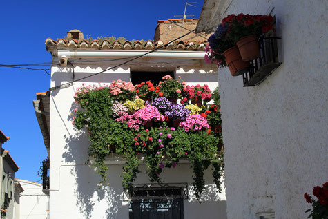 A flowerful balcony in Lanteira