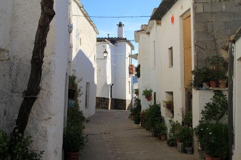 A street in Lobras