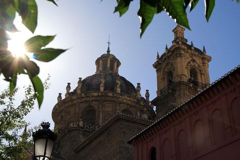 """View on """"La Collegiata"""""""