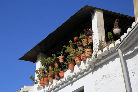 A roof terrace in Pinos del Valle