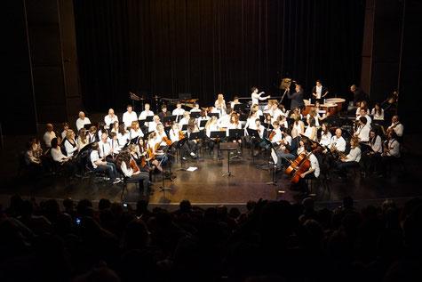 Ecole de musique EMC à Crolles - Grésivaudan : orchestre en concert dans l'auditorium de l'espace Paul Jargot.