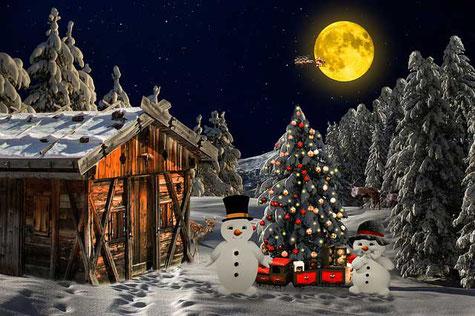 Kurze Weihnachtsgedichte: Schönster Baum