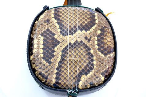 色艶の良いきれいな鱗の三線用蛇皮