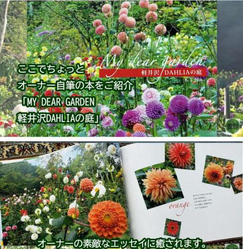My dear garden 軽井沢DAHLIAの庭