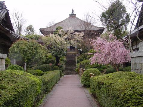 Sado Tukaharasan Konponji-Temple