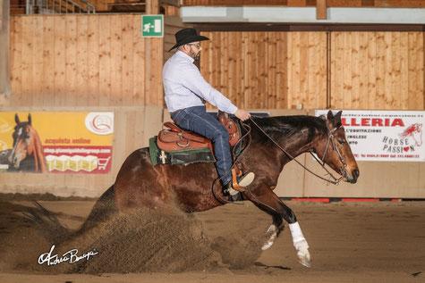 Raffaelli Davide - Novice Rider 2 mani