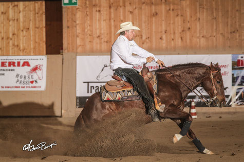 Auer Bernhard - Novice Horse Non Pro
