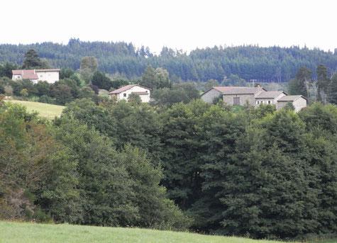 Le hameau de l'Herbet caché derrière un rideau d'arbres. Vue de Mandon