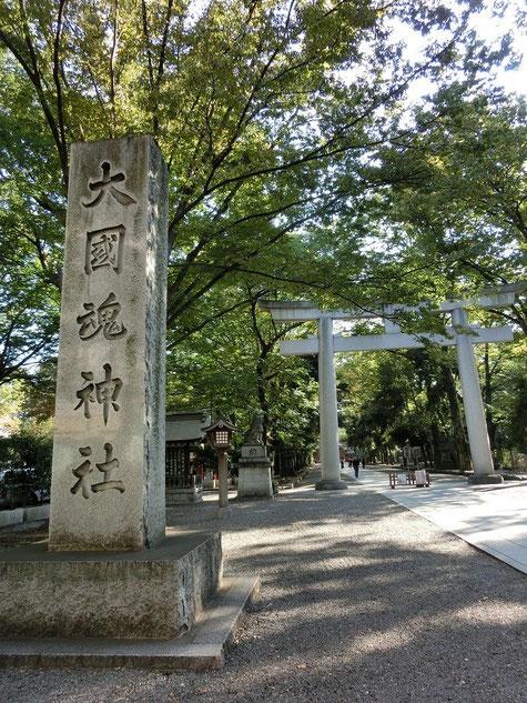 ●大國魂神社の入り口の大鳥居。ケヤキ並木は中にも続きます。「ふるさと府中歴史館」は、この境内にあります