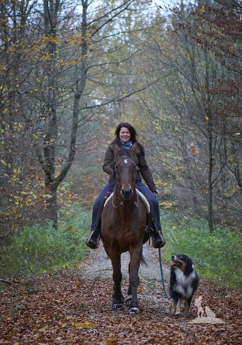 mein-wanderhund; Andrea Obele; Reitbegeleithund; Ausbildung;