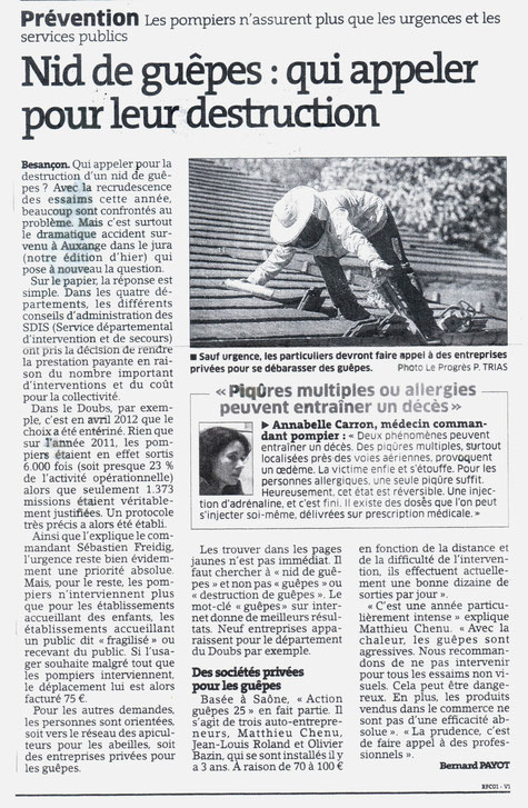 Article Guêpes Est Républicain 07-2015