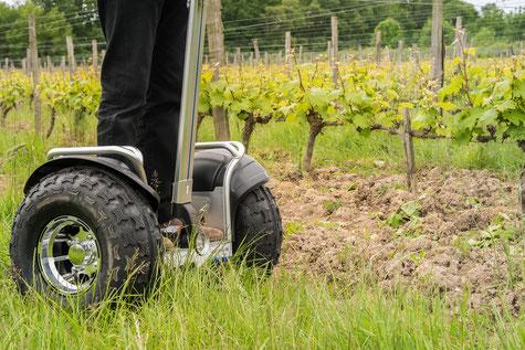 VinoLoire - Vincent Delaby - Excursions privilégiées dans les domaines vignobles du Val de Loire - Visites découverte en gyropode
