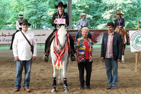 Iris Trauner und Enzo sind Internationale Österreichische Meister Pleasure Open Vollblutaraber. Foto: CK Photographics