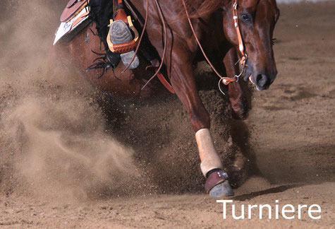 Reinhard Hochreiter stellt Reining-Pferde auf Turnieren vor und coacht Reining-Reiter auf Turnieren.