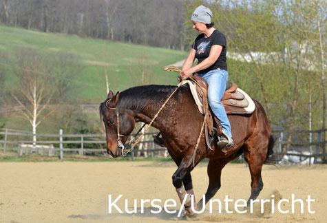 Reinhard Hochreiter hält Kurse für Reining-Reiter und gibt Reining-Unterricht.