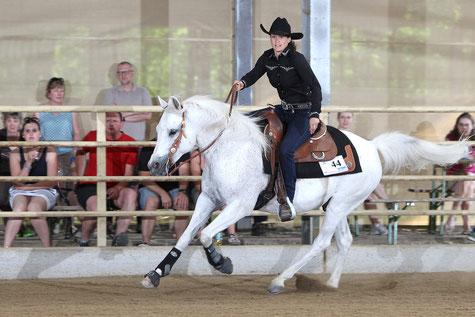 Iris Trauner und Enzo sind Internationale Österreichische Meister in der Reining der Vollblutaraber 2016. Foto: CK Photographics; Archivbild