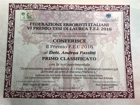 Attestato di vincita del premio FEI 2016 per la sezione delle tesi sperimentali.