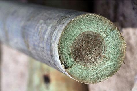 столб электрический деревянный пропитанный