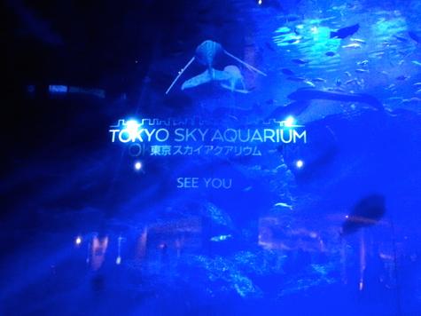 東京スカイアクアリウム SEE YOU