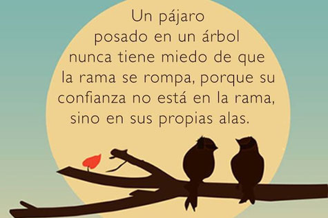 Imagen de: terapiaconangeles.com