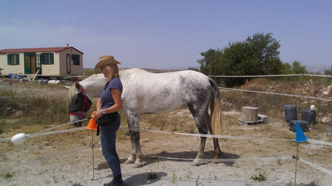 Pegaso when he was first rescued