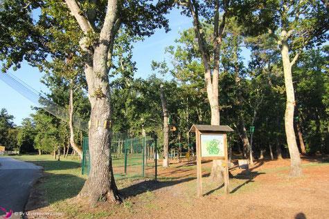 Kletttergarten am Campingplatz