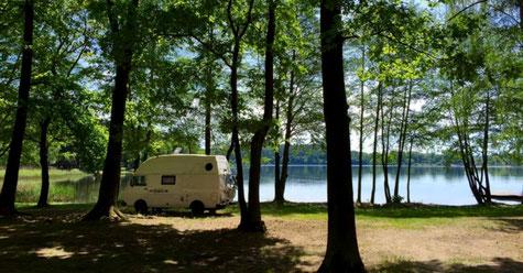 viajeromogli, Life of Balu, VW Bus, Camping