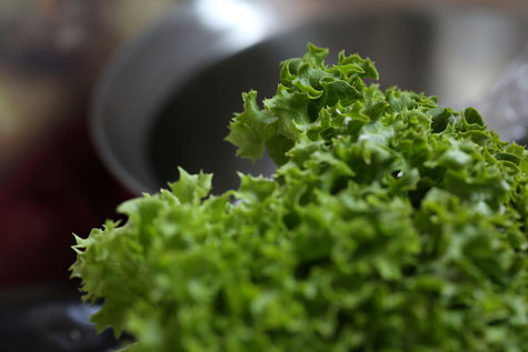 Frischer Salat foto:fotolia