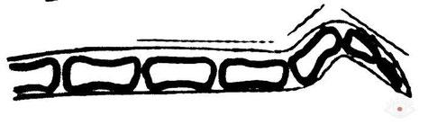 Схема залома хвоста