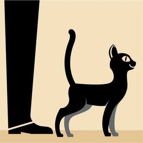 Если кошка поворачивается к вам спиной и поднимает хвост