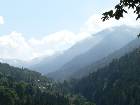 Johnsbach im Gesäuse, Ruhe und Erholung in den Bergen