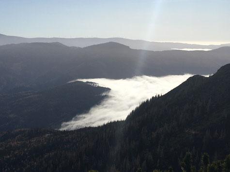 Nebel zieht über einen Gebirgspass