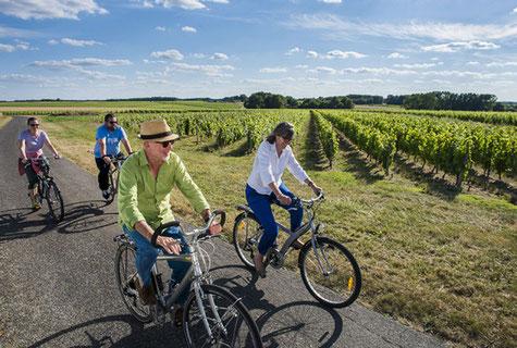 balade-vélo-vignoble-vallee-Loire-oenotourisme-sortie-insolite-Rendez-Vous-dans-les-Vignes
