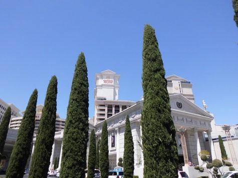 Bild: Route 66, HDW, Las Vegas, Ceasars Palace